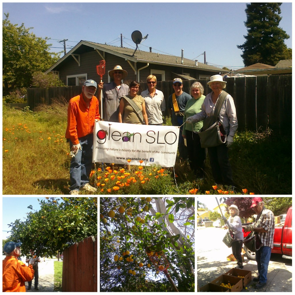 Arroyo Grande Neighborhood Glean collage