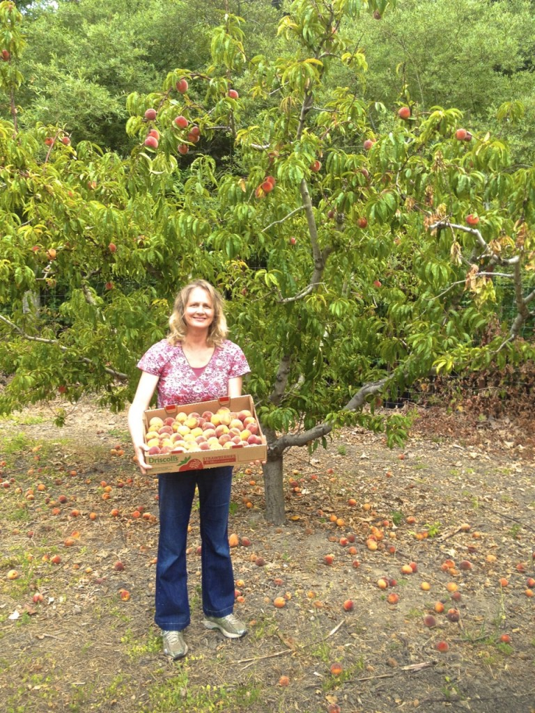 carolyn in peach orchard