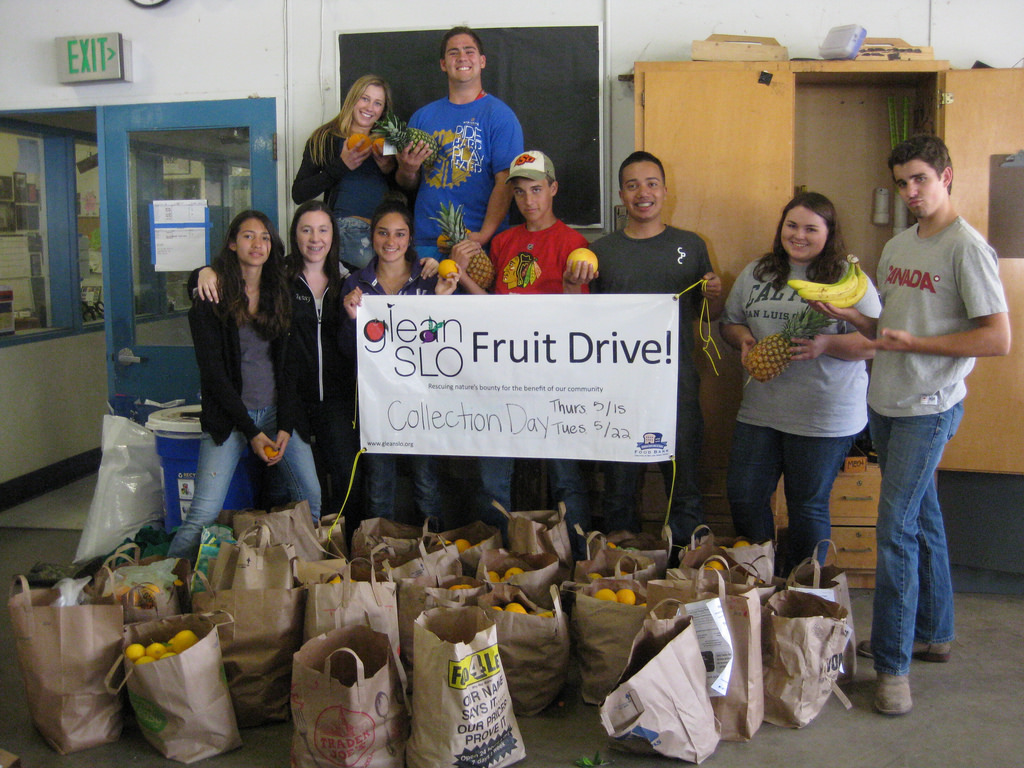 SLO High students collect neighborhood fruit!