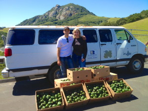 Mike with his mom, Laurie, gleaning avocados. Photo credit: Carolyn Eicher