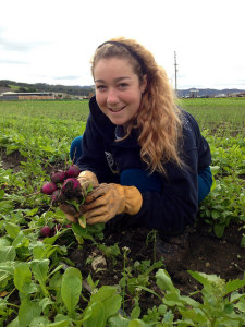 Emma harvesting radishes at Talley Farms